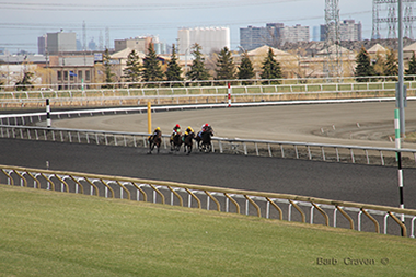 Name:  woodbine coming down the stretch for p n c.png Views: 242 Size:  187.2 KB